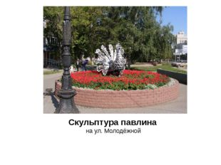Скульптура павлина на ул. Молодёжной