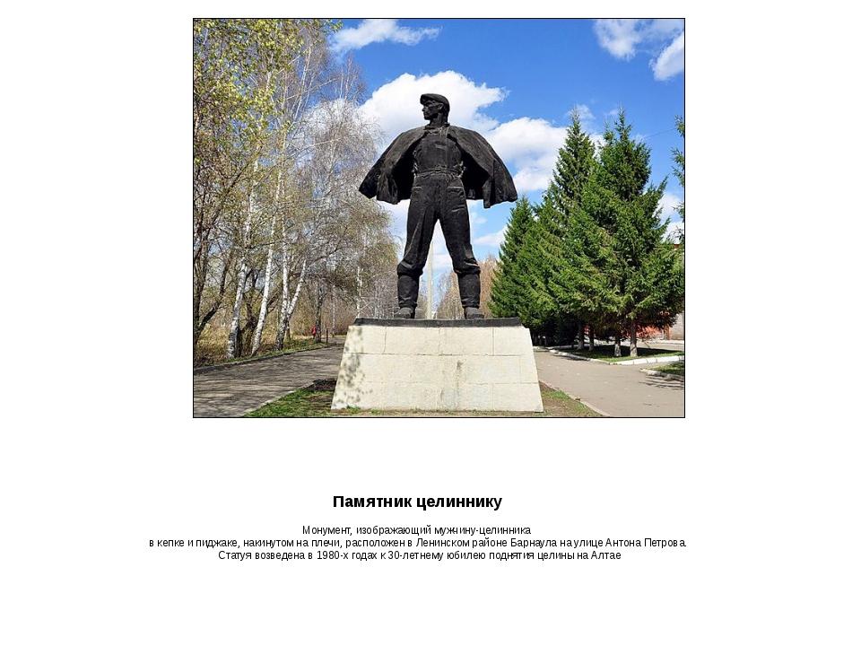 Памятникцелиннику Монумент,изображающиймужчину-целинника вкепкеипиджак...