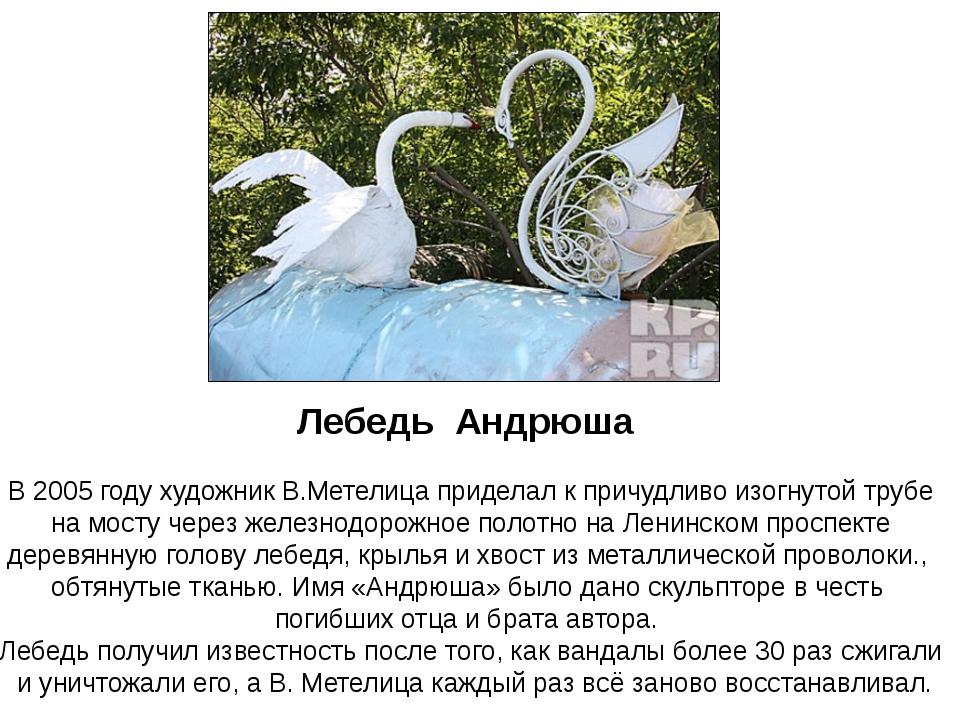 Лебедь Андрюша В 2005 году художник В.Метелица приделал к причудливо изогнуто...