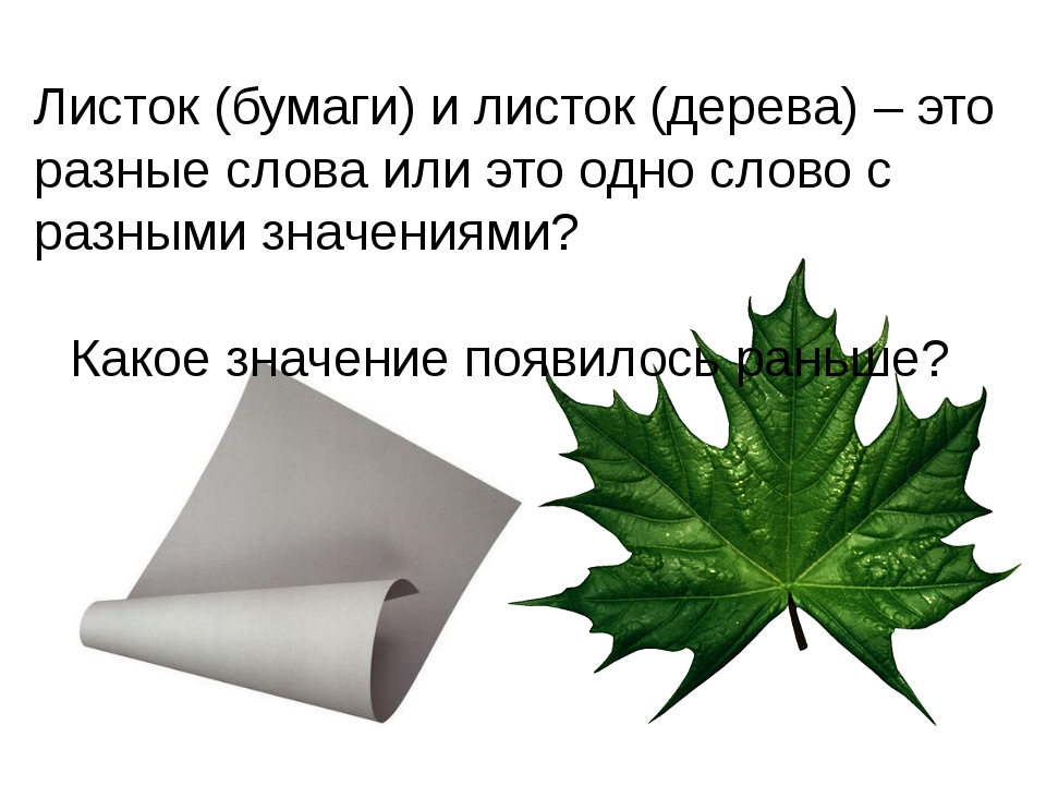 Листок (бумаги) и листок (дерева) – это разные слова или это одно слово с раз...