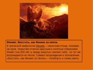 Феникс. Восстать, как Феникс из пепла. В греческой мифологии Феникс – сказоч