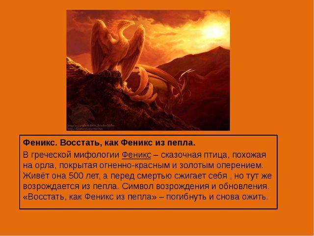 Феникс. Восстать, как Феникс из пепла. В греческой мифологии Феникс – сказоч...