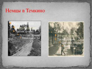 Немцы в Темкино