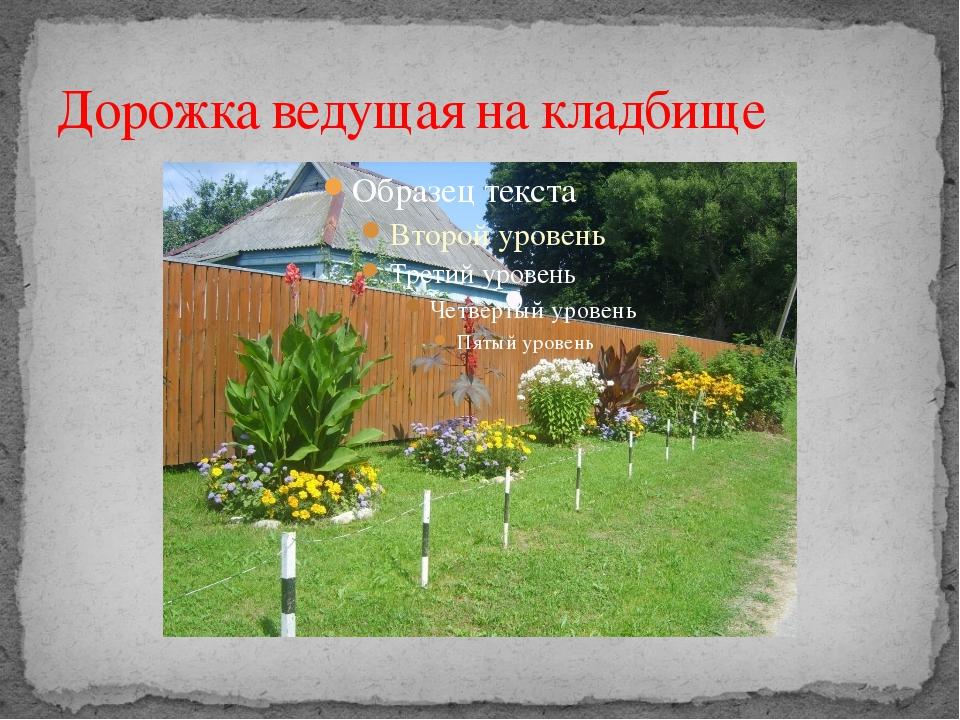 Дорожка ведущая на кладбище