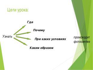 Цели урока: происходит фотосинтез Узнать Где При каких условиях Почему Каким