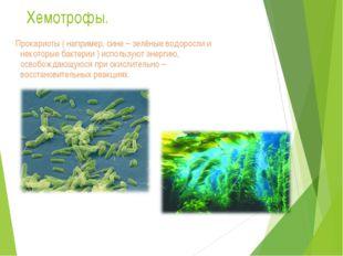 Хемотрофы. Прокариоты ( например, сине – зелёные водоросли и некоторые бактер
