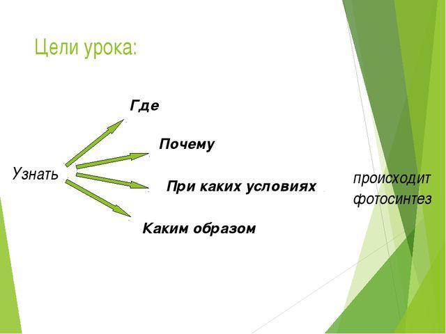 Цели урока: происходит фотосинтез Узнать Где При каких условиях Почему Каким...