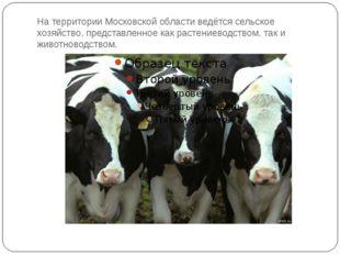 На территории Московской области ведётся сельское хозяйство, представленное к