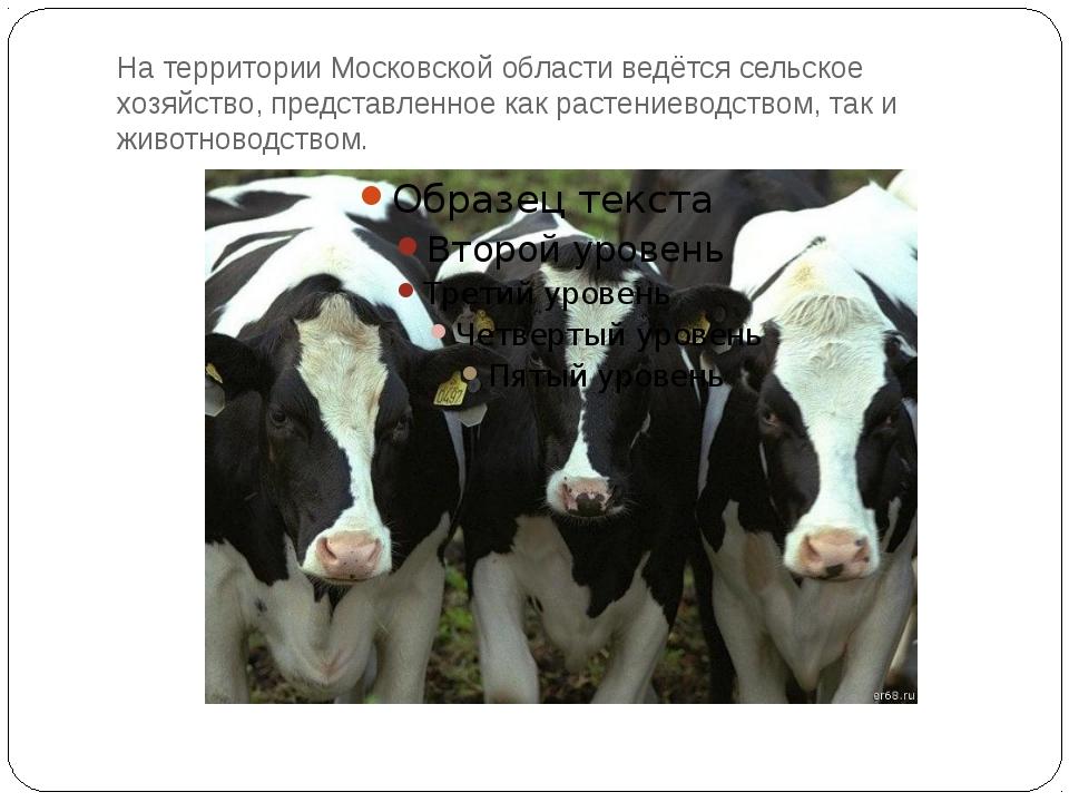 На территории Московской области ведётся сельское хозяйство, представленное к...