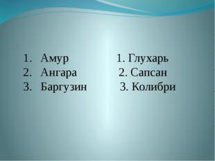 Амур 1. Глухарь Ангара 2. Сапсан Баргузин 3. Колибри