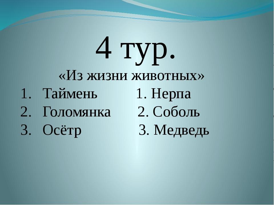 4 тур. «Из жизни животных» Таймень 1. Нерпа Голомянка 2. Соболь Осётр 3. Мед...