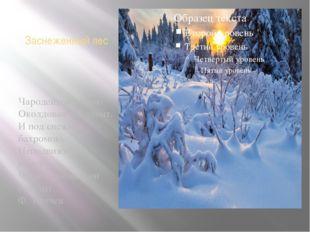 Заснеженный лес Чародейкою зимою Околдован лес стоит. И под снежной бахромою,