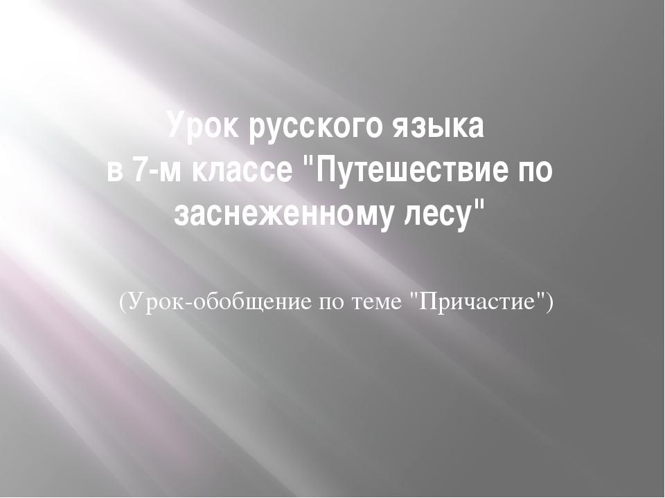 """Урок русского языка в 7-м классе """"Путешествие по заснеженному лесу"""" (Урок-обо..."""