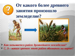 От какого более древнего занятия произошло земледелие? Как называется район д