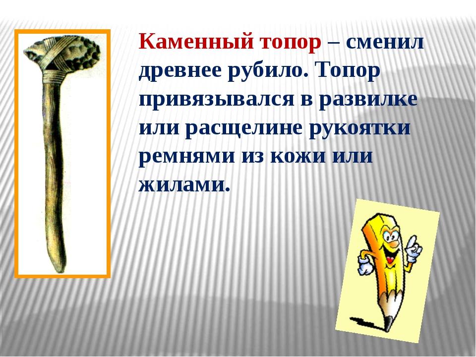 Каменный топор – сменил древнее рубило. Топор привязывался в развилке или рас...