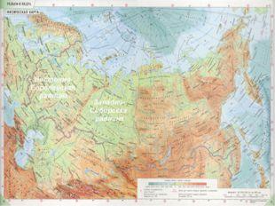 Восточно- Европейская равнина Западно- Сибирская равнина