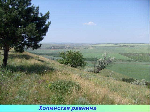 Холмистая равнина