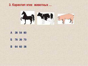 6. Полный набор хромосом в соматических клетках животного… Агеном Бгенотип