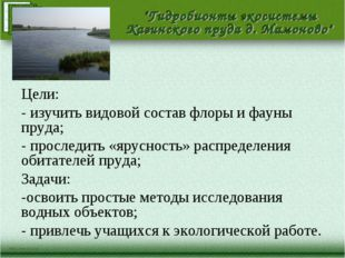 Цели: - изучить видовой состав флоры и фауны пруда; - проследить «ярусность»