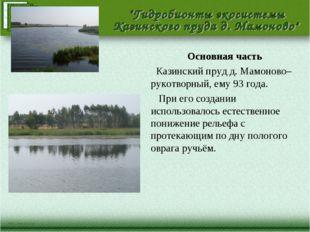 Основная часть Казинский пруд д. Мамоново– рукотворный, ему 93 года. При его