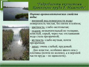 Оценка органолептических свойств воды: - внешний вид поверхности воды: поверх