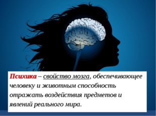 Психика – свойство мозга, обеспечивающее человеку и животным способность отра