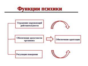Функции психики Отражение окружающей действительности Регуляция поведения Обе