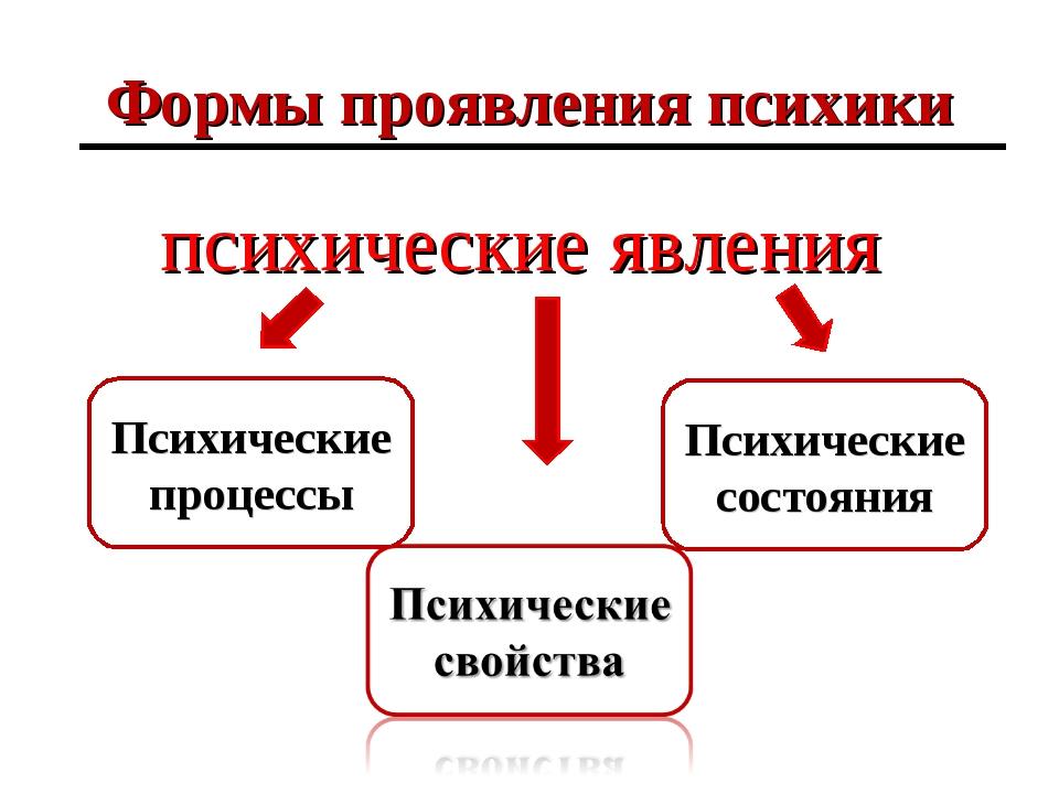 Формы проявления психики психические явления Психические процессы Психические...