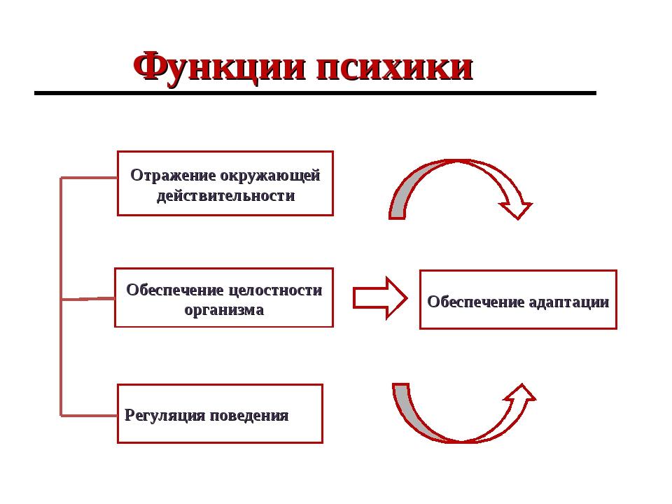 Функции психики Отражение окружающей действительности Регуляция поведения Обе...