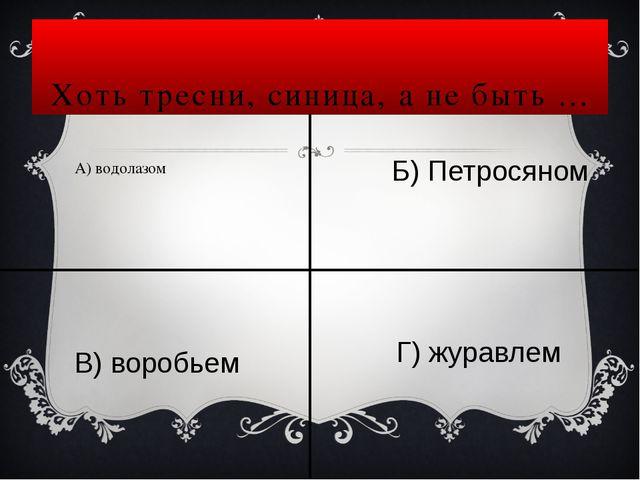 Про100р Простор
