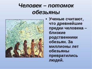 Человек – потомок обезьяны Ученые считают, что древнейшие предки человека – б