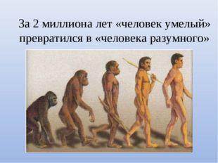 За 2 миллиона лет «человек умелый» превратился в «человека разумного»