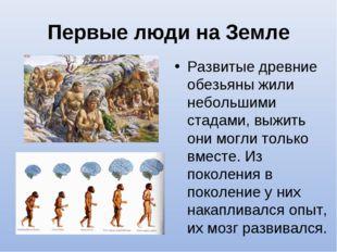 Первые люди на Земле Развитые древние обезьяны жили небольшими стадами, выжит