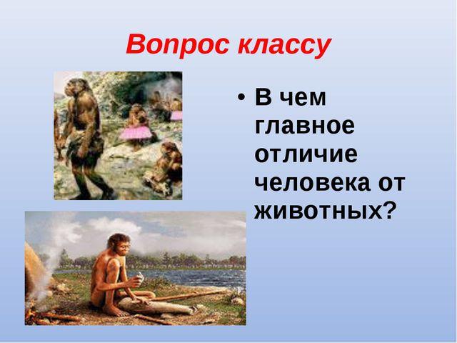 Вопрос классу В чем главное отличие человека от животных?