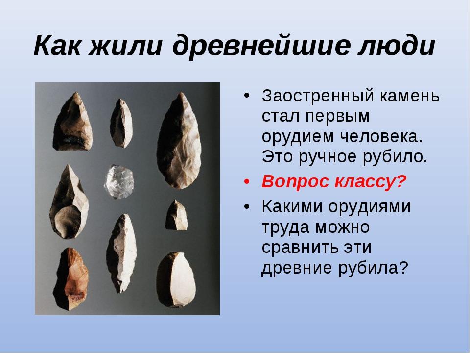 Как жили древнейшие люди Заостренный камень стал первым орудием человека. Это...