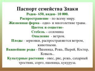 Паспорт семейства Злаки Родов- 650, видов- 10000. Распространение- по всему