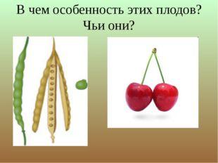 В чем особенность этих плодов? Чьи они?