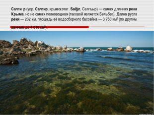 Салги́р (укр. Салгир, крымскотат. Salğır, Салгъыр) — самая длинная река Крыма