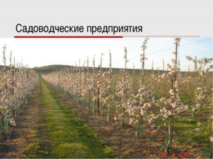 Садоводческие предприятия
