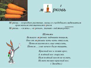 м рковь Морковь – огородное растение, овощ со съедобным сладковатым оранжевым