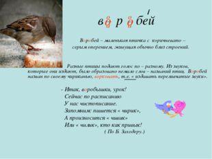 в р бей Воробей – маленькая птичка с коричневато – серым оперением, живущая о