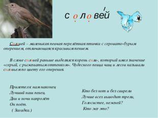 с л вей Соловей – маленькая певчая перелётная птичка с серовато-бурым оперен