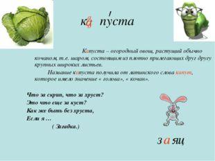 к пуста Капуста – огородный овощ, растущий обычно кочаном, т.е. шаром, состоя