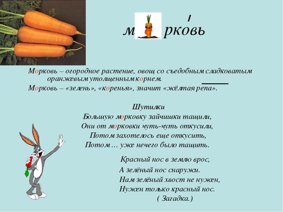 м рковь Морковь – огородное растение, овощ со съедобным сладковатым оранжевым...
