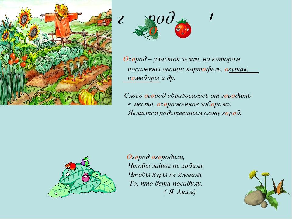 г род Огород – участок земли, на котором посажены овощи: картофель, огурцы,...