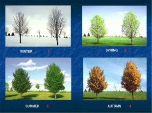 WINTER SPRING SUMMER AUTUMN 1 2 3 4