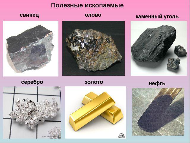 Полезные ископаемые свинец олово каменный уголь серебро золото нефть
