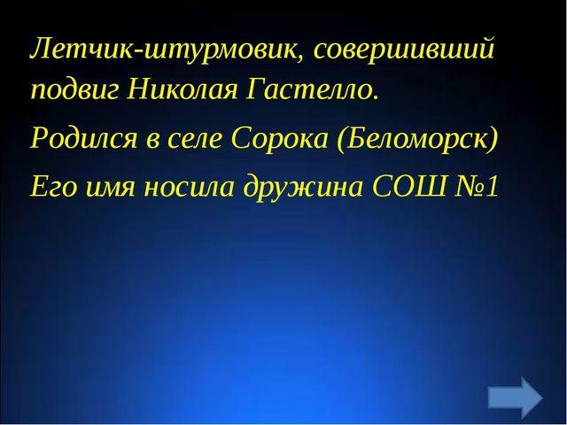 Летчик-штурмовик, совершивший подвиг Николая Гастелло. Родился в селе Сорока...