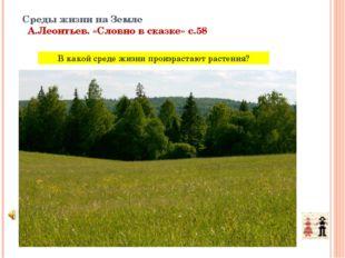 Среды жизни на Земле А.Леонтьев. «Словно в сказке» с.58 В какой среде жизни п