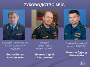Первый заместитель министра МЧС Шляков Сергей Анатольевич Главный военный экс